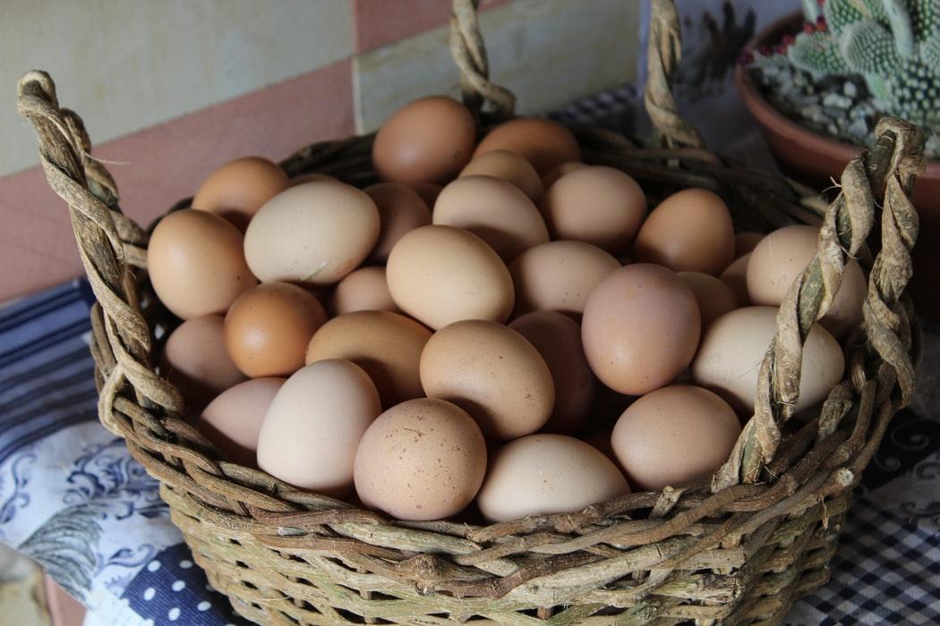 【ふるさと納税】厳選「卵」オススメ!地鶏の濃厚な卵!